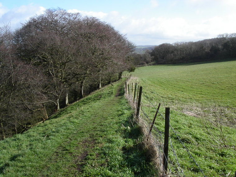 Cotswold Way: Cotswold Way at Ring Hill  - © geograph user Vincent Jones
