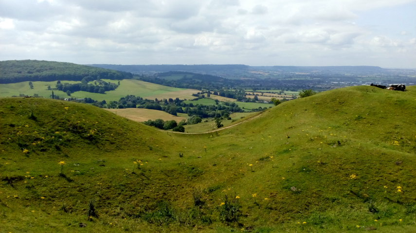 Cotswold Way: Haresfield Beacon on the Cotswold Way  - ©  flickr user Paul Stephenson