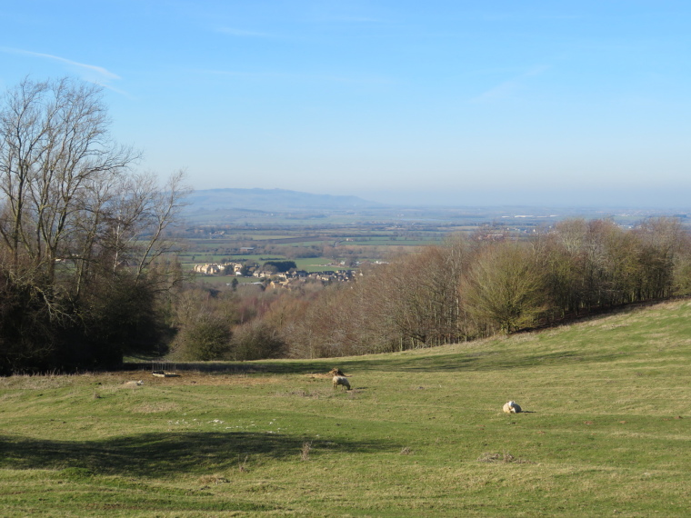 Cotswold Way: Severn valley from nr C Campden