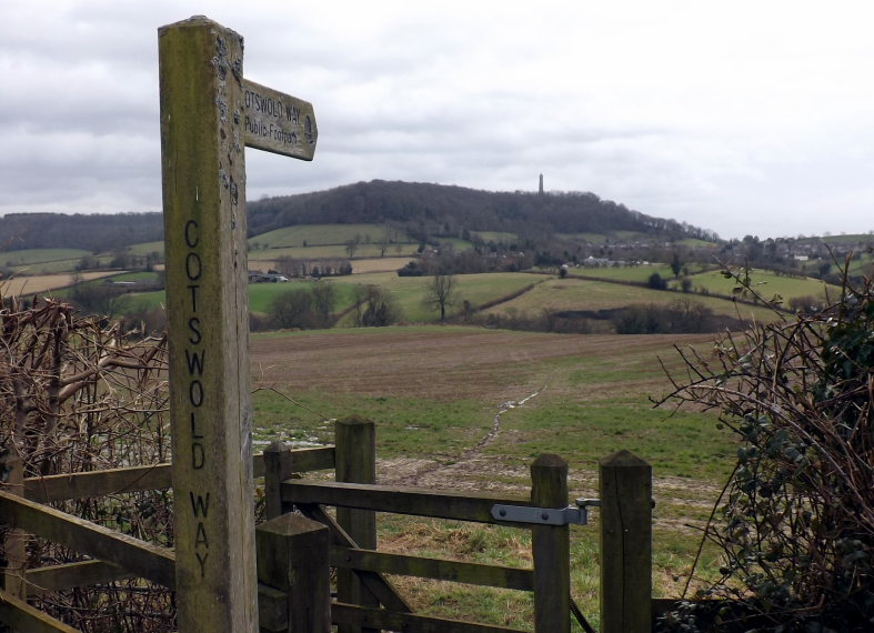 Cotswold Way: Tyndale Monument from further along the Cotswold way.  - © flickr user James Court