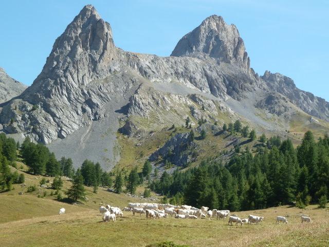 France Alps, GR5 or Grand Traverse des Alpes, Pointe de la Selle, Walkopedia