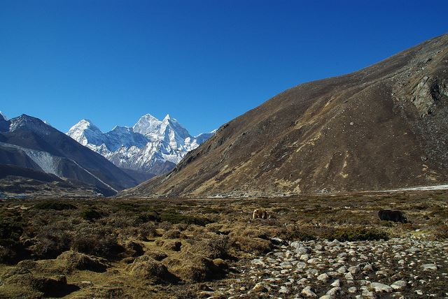 Everest Base Camp, Nepal - Pheriche - © Flickr user girolame