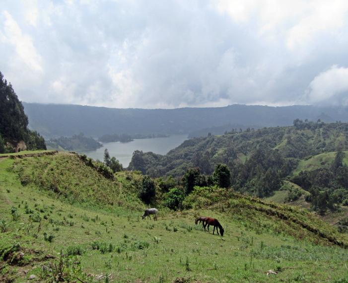 Ethiopia Central, Wonchi Crater Lake , Horses and Wenchi Crater Lake , Walkopedia