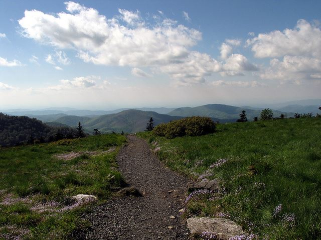 "Appalachian Trail - Carver""s Gap - © Flickr user BlueRidgeKitties"