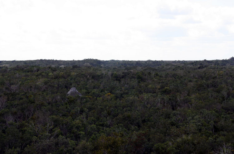 Tulum, and Coba to Yaxuna: Yaxuna - View From Castillo - © By Flickr user Redeo