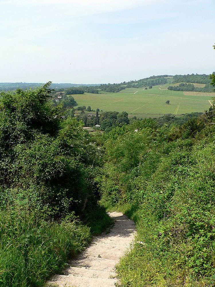 The English Countryside, Box Hill - © By Flickr user