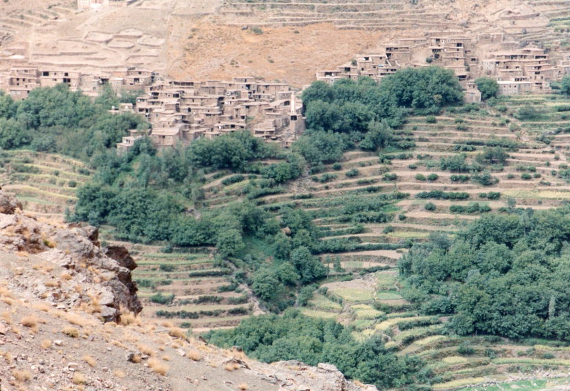 Berber terraces high on dry slopes - © William Mackesy