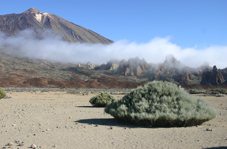 Tenerife: El Tiede and Roques de Garcia - © William Mackesy