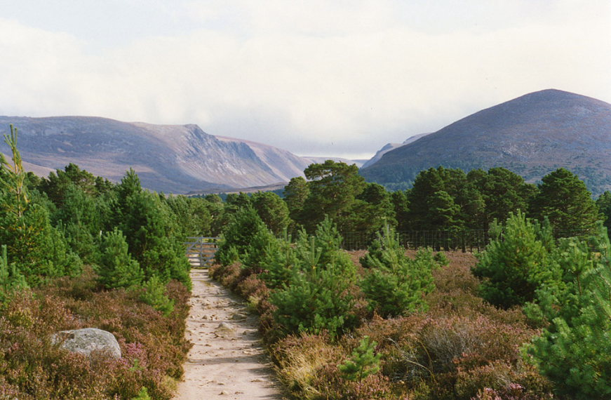 The Lairig Ghru path near Tullochgrue  - © geograph user Nigel Brown