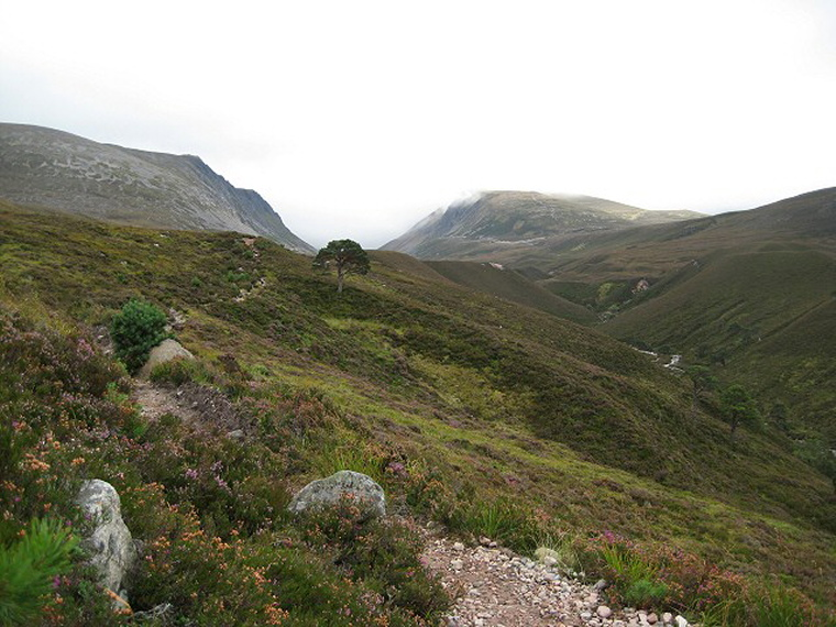 Towards the Lairig Ghru  - © geograph user Lis Burke