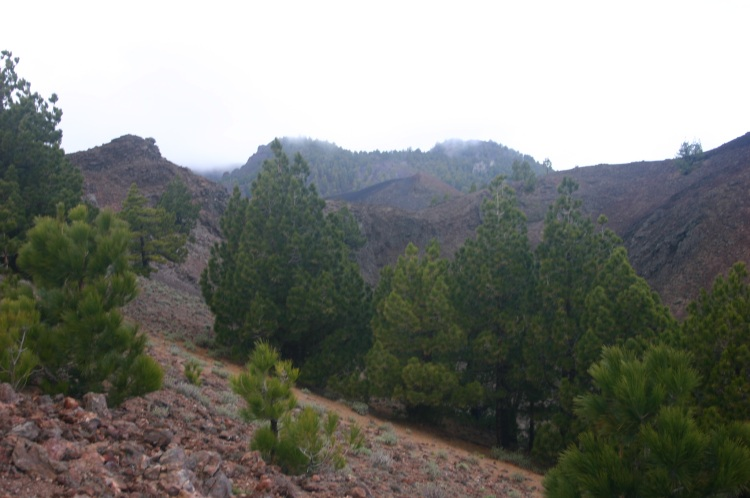 Spain Canary Islands: La Palma, Great Volcanic Ridge, Great Volcanic Ridge - Route of Volcanoes, Walkopedia