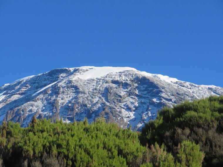 Mount Kilimanjaro : Kibo from Millennium camp - © William Mackesy