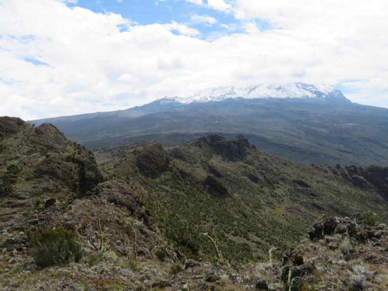 Mount Kilimanjaro : Eastern Shira rim from Shira Cathedral walk - © William Mackesy