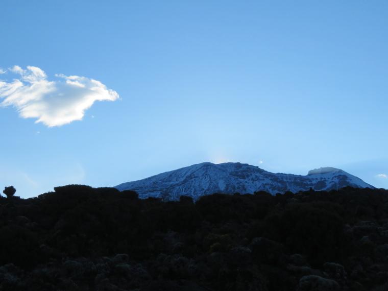 Tanzania Mount Kilimanjaro, Trekking Kilimanjaro , From Shira 2 camp, early, Walkopedia