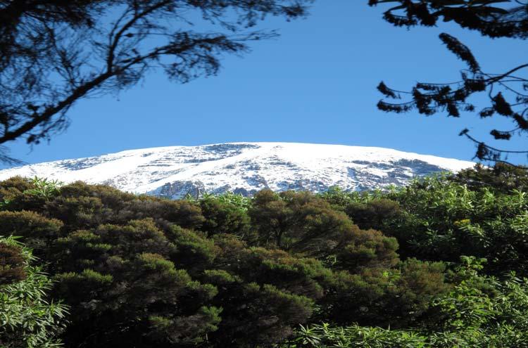 Mount Kilimanjaro : © Emily Townsend