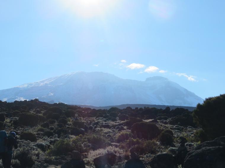 Mount Kilimanjaro : Above Shira 2, am - © William Mackesy
