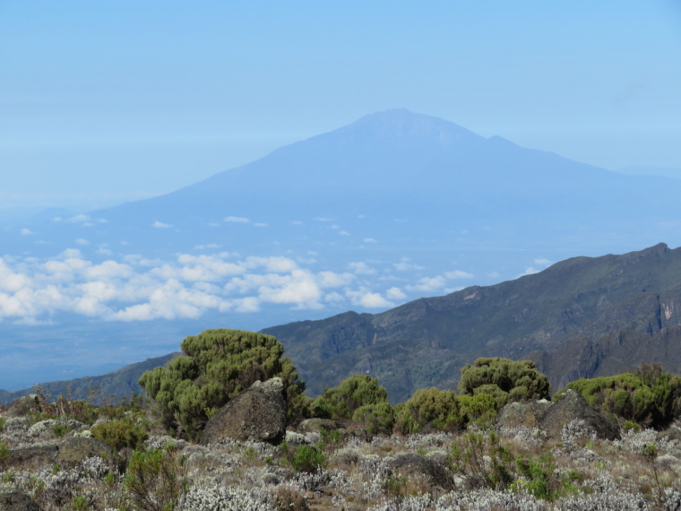 Mount Kilimanjaro : Meru from above Shira 2, am - © William Mackesy