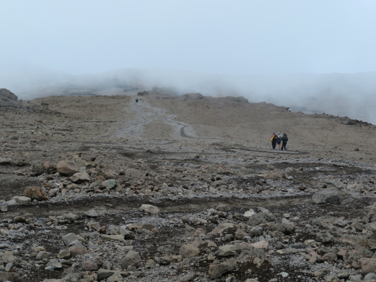Tanzania Mount Kilimanjaro, Trekking Kilimanjaro , Path spaghetti below Barafu camp, Walkopedia