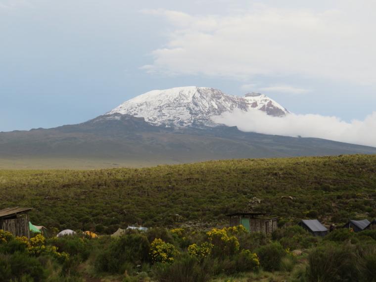 Mount Kilimanjaro : Shira 1 camp - © William Mackesy