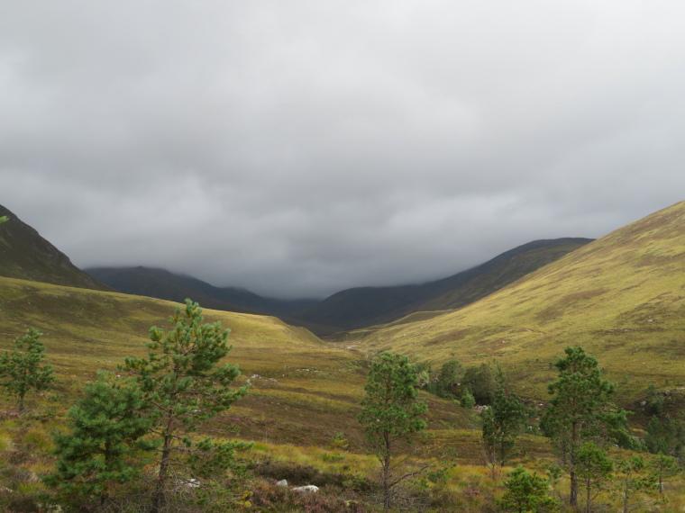 Cairngorms: Upper Glen Lui - © William Mackesy