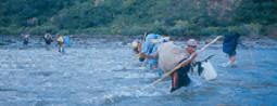 Cordillera Apolobamba Traverse (from Pelechuco): Crossing Tuichi tributary - © John Benson