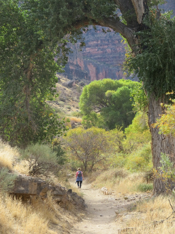 Tonto Trail: Near Indian Garden - © William Mackesy