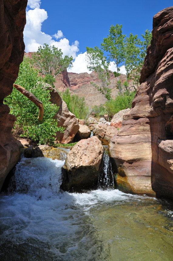 USA SW: Grand Canyon, Thunder River, Deer Creek Trails, Deer Creek Trail 3 , Walkopedia