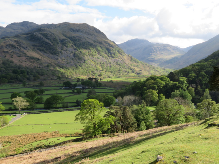 Coast to Coast: Borrrowdale - © William Mackesy
