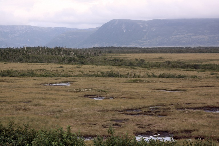 Canada Newfoundland, Gros Morne NP, , Walkopedia