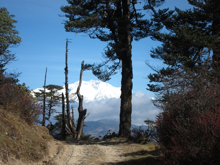 India Sikkim and nearby, Singalila Ridge to Kangchenjunga, Kanchenjunga from the lower ridge trail, Walkopedia