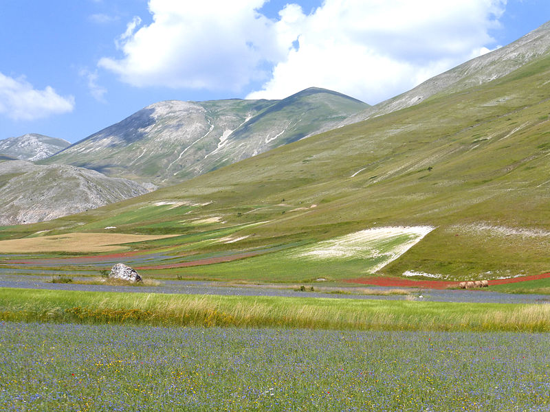 Sibillini: Piano Grande from Castelluccio - © Wikimedia Dick Pountain