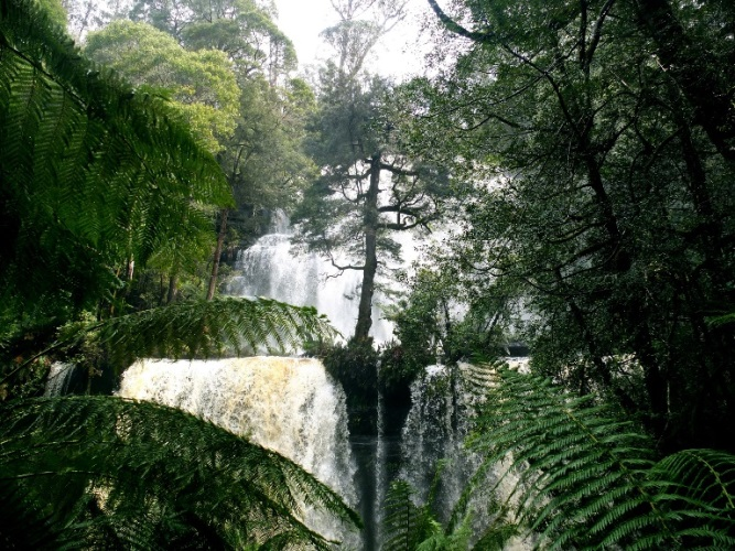 Russell Falls after rainfall  - © flickr user- jellybeanz