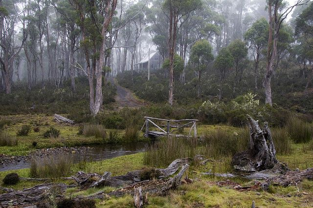 Cradle Mountain - on the path to Cradle Mt - © Copyright Flickr user Julie Edgley