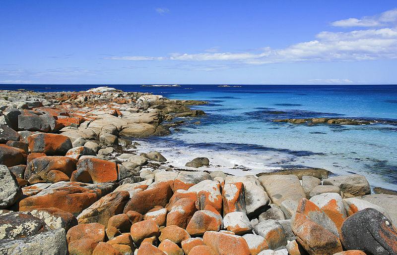 Australia Tasmania, Bay of Fires, Bay of Fires, Walkopedia