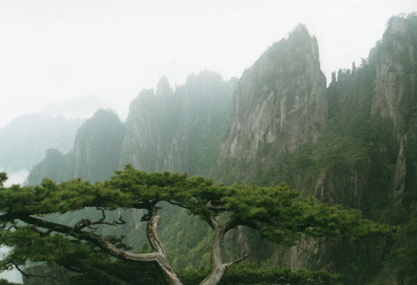 Huangshan - © William Mackesy