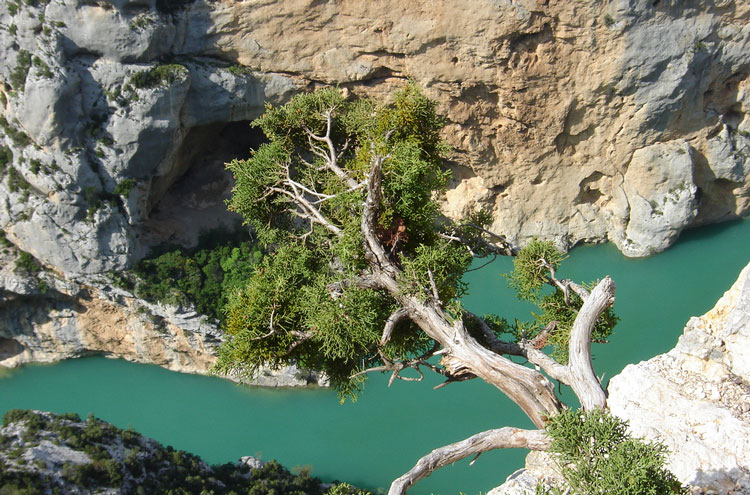 Verdon Gorge - © By Flickr user Teo X