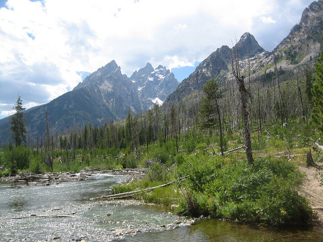 Grand Teton National Park - © Copyright Flickr User Iburiedpaul