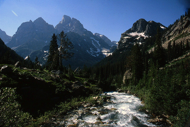 Paintbrush/Cascade - Cascade Canyon - © Copyright Flickr User Listen Missy!