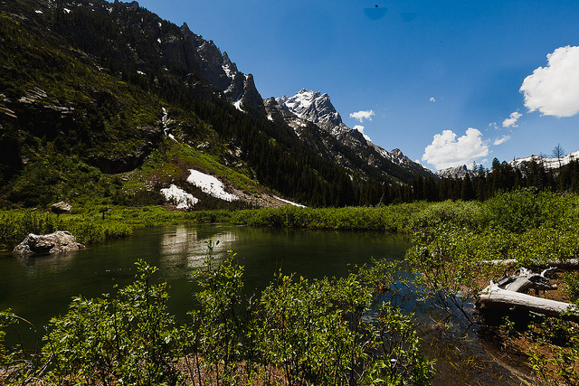 Grand Teton National Park - Cascade Canyon - © Copyright Flickr User alh1