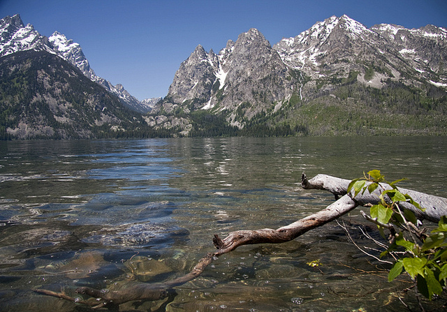 Grand Teton National Park - Jenny Lake - © Copyright Flickr User gr8dnes