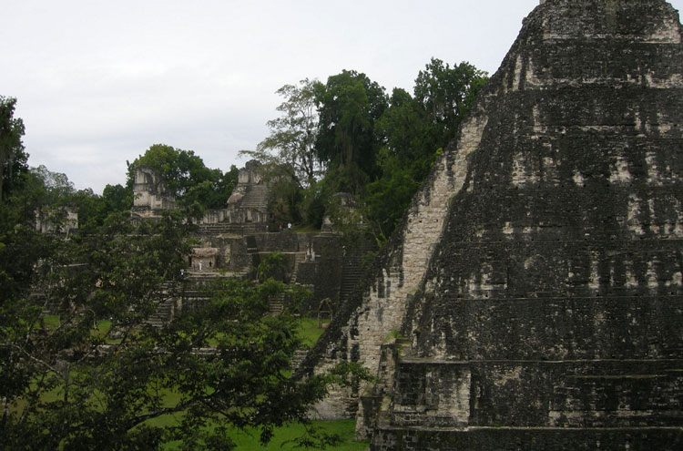 Mayan Ruins: Tikal - © By Flickr user einalem