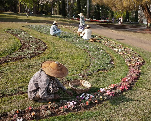 Pyin U Lwin - Botanic gardens - © Copyright Flickr user ninjawil