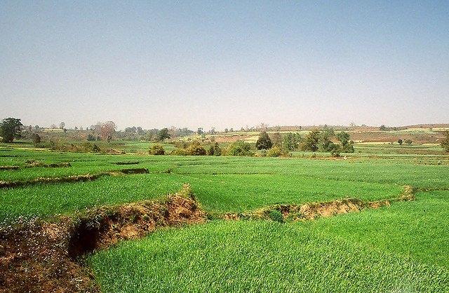 Myanmar, Pyin U Lwin, Pyin U Lwin - the road to Peik Chin Myaung, Walkopedia