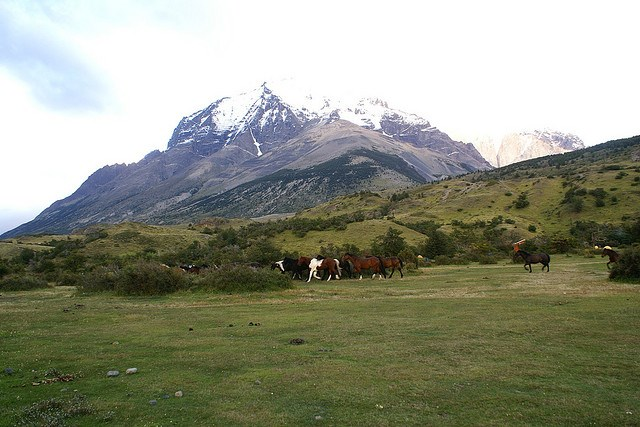 Torres del Paine Lookout - Campamento Torres - © Copyright Flickr user hixaga