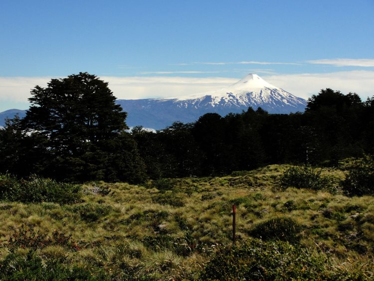 Huerquehue NP - Volcan Villarrica From Quinchol - © Copyright Flickr User JavierPsilocybin