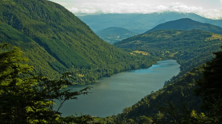 Los Lagos/Huerquehue Plateau - Laguna Tinquilco - © Copyright Flickr User chilered10