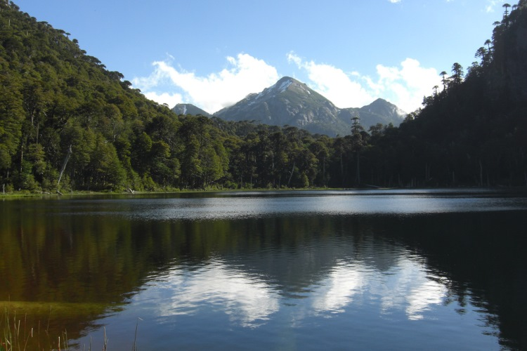Los Lagos/Huerquehue Plateau - Lake Pequen - © Copyright Flickr User pellaea