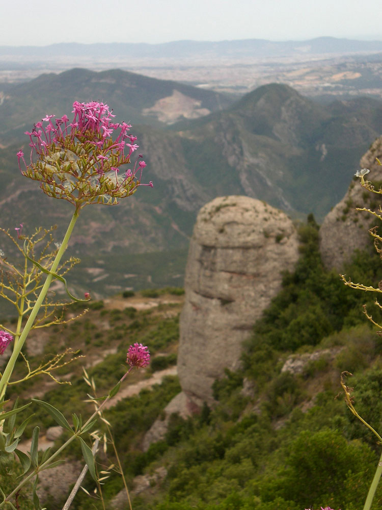 Montserrat - © By Flickr user ginsnob