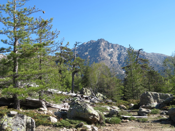 GR20 east of Col de Virgio from east - © William Mackesy