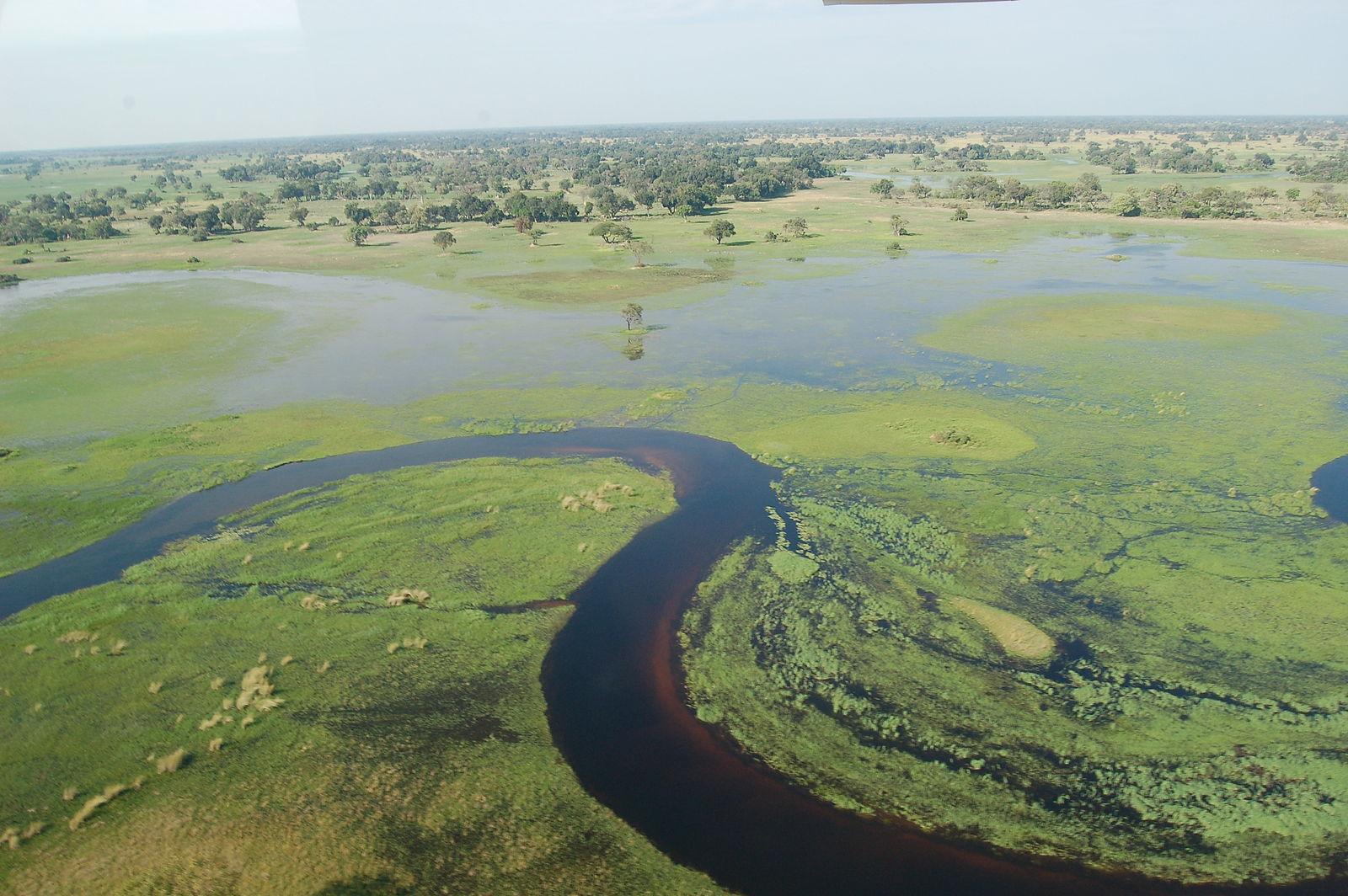 Okavango Delta: Okavang Delta Botswana - ©  wiki user Joachim Huber